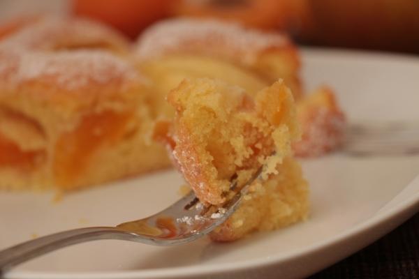 Apfel-Aprikosen-Kuchen_2